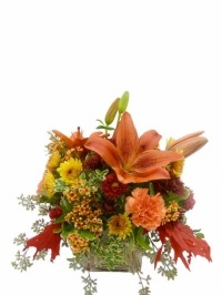 Autumn Assortment of Flowers